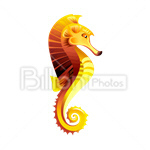 Сlipart Sea Animal Sea Life Sea Horse Underwater vector icon cut out BillionPhotos