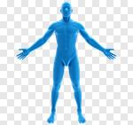 Сlipart The Human Body Anatomy Body Men Medical Exam 3d cut out BillionPhotos