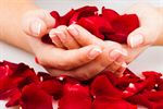 Сlipart Fingernail Manicure Human Hand Rose Red photo  BillionPhotos
