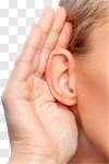 Сlipart Listening Human Ear Sensory Perception Women Human Hand photo cut out BillionPhotos