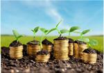 Сlipart wealth concept thai money tree   BillionPhotos