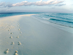 Сlipart beach sand surf water waves photo  BillionPhotos
