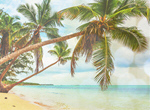 Сlipart beach scene sunlight wallpaper coast   BillionPhotos