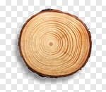 Сlipart Wood Tree Tree Ring Log Tree Stump photo cut out BillionPhotos