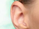 Сlipart Human Ear Listening Sound Sensory Perception Using Senses   BillionPhotos