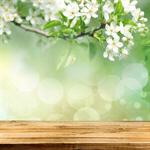 Сlipart background flowers tree clean vibrant   BillionPhotos