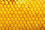 Сlipart Honeycomb Honey Hexagon Pattern Orange photo  BillionPhotos