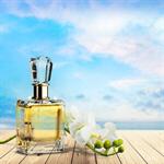 Сlipart Perfume Cosmetics Bottle Gift White   BillionPhotos